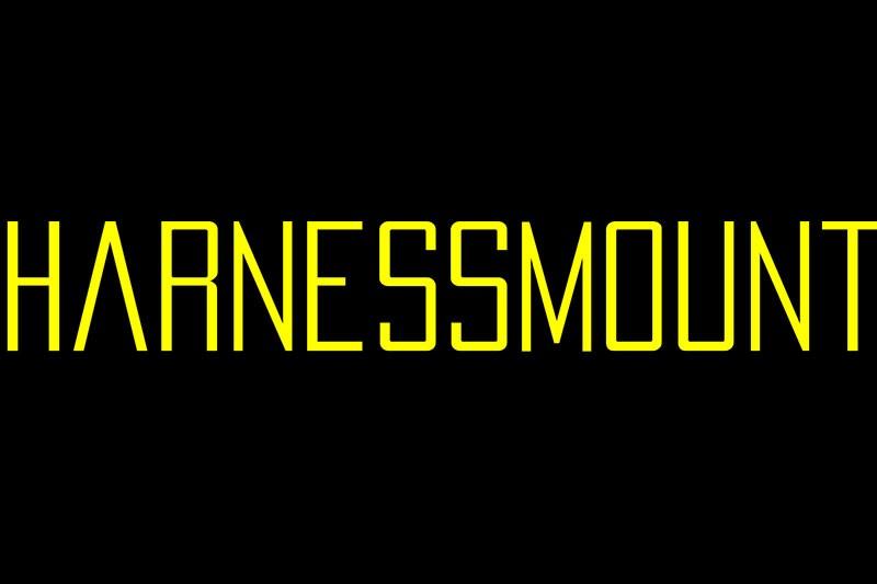 Harnessmount
